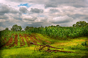 Summer Season Landscapes Prints - Farm - Organic farming Print by Mike Savad