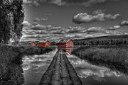 Log Photos - Fetsund Timber Booms - Selective Color by Erik Brede