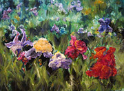 Diane Kraudelt - Field Of Flowers