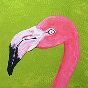 Lizi Beard-Ward - Flamingo Head