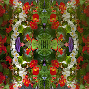 Buy Posters Online Digital Art - Flowers Reflect by Robert Gipson
