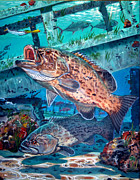 Carey Chen - Gag Grouper In0030