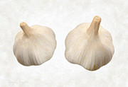 Single Object Painting Posters - Garlic Poster by Danny Smythe