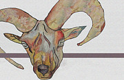 Goat Mixed Media Posters - Goat Poster by Water Lily