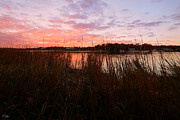 New England Marina Park Prints - Goddard Sunset Print by Lourry Legarde