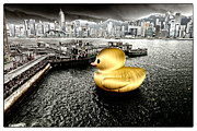 Tsui Originals - Golden duck in Victoria Harbor by Thierry CHRIN