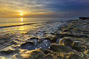 Beachscape Prints - Golden Morning Print by Debra and Dave Vanderlaan