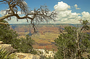 Ledge Photos - Grand Canyon State by Nick  Boren