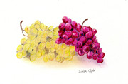 Purple Grapes Drawings - Grapes by Linda Ginn