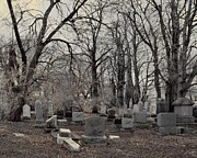 Spooky Digital Art - Gray Graveyard Trees by Gothicolors And Crows
