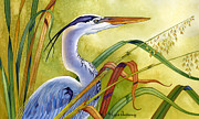 Egrets Paintings - Great Blue Heron by Lyse Anthony
