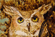 Owl Pyrography Metal Prints - Great Horned Owl Metal Print by Melissa Bittinger