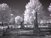 Tuscaloosa Photo Prints - Greenwood Cemetery in Tuscaloosa  Print by Carol M Highsmith