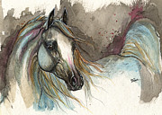 Horse Drawings - Grey Arabian Horse Watercolor Painting 2013 11 15 by Angel  Tarantella