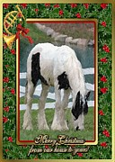 Gypsy Drawings Prints - Gypsy Vanner Horse Blank Christmas Card Print by Olde Time  Mercantile