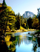 Pine Trees Mixed Media Metal Prints - Half Dome Yosemite River Valley Metal Print by Nadine and Bob Johnston