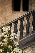 Staircase Railing Framed Prints - Halfway Down Framed Print by Heiko Koehrer-Wagner