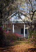 Rocking Chairs Photos - Hampton Slave Quarters by John Rizzuto