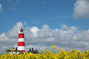 Paul Lilley Metal Prints - Happisburgh Lighthouse with Oil Seed rape In Flower Metal Print by Paul Lilley
