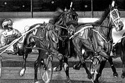 New Jersey Drawings - Harness Race by Jerry Winick