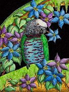 Jeanette Kabat - Hawk-headed Parrot