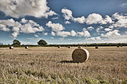 Harvest Time Prints - Hay Bales 1 Print by Steve Purnell