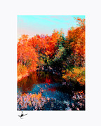 Autumn Prints Pastels Posters - Hayward Maple Autumn Poster by Mike Bernard