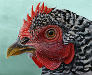 Trujillo Prints - Hen Print by Michael Trujillo