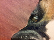 Elizabeth Edwards paints a dogs eye