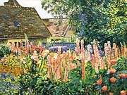 Manor Painting Posters - Hollyhocks Garden Poster by David Lloyd Glover