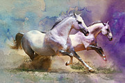 White Horses Framed Prints - Horse paintings 004 Framed Print by Catf