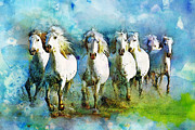White Horses Posters - Horse Paintings 005 Poster by Catf