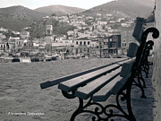 Hydra - Hydra Black and White by Alexandros Daskalakis