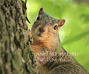 Rosanne Jordan - I Love You Squirrel