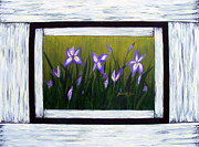 Barbara Griffin - Irises And Old Boards - Weathered Wood