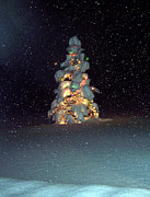 Snowy Night Photos - Is it Christmas yet by Gloria Koch