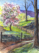 Apple Tree Drawings Prints - Its Appleblossom Time Print by Carol Wisniewski