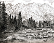 Wyoming Drawings - Jackson Hole by BibZ Priori