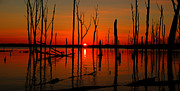 Manasquan Reservoir Prints - January Sunrise Print by Raymond Salani III