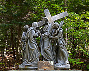 Forest Photos - Jesus Meets His Mother by Terry Reynoldson