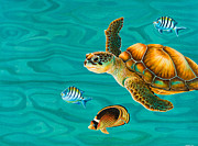 Hawaiian Fish Paintings - Kauila Sea Turtle by Emily Brantley