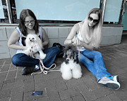 Black And White Photography Painting Metal Prints - Ladies from Pinnacle Pet Spa - Cyanotype Metal Print by Julie Niemela