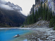Evergreens Prints - Lake Louise North Shore - Canada Rockies Print by Daniel Hagerman