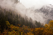 Landscpe Photostories Of Tibet Jiuzhaigou Fine Art Print by Sundeep Bhardwaj Kullu sundeepkulluDOTcom