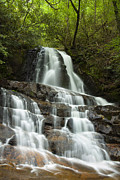Park Scene Photo Prints - Laurel Falls Cascades Print by Andrew Soundarajan
