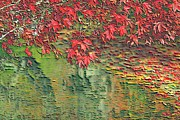 Autumn Leaf On Water Mixed Media Prints - Leaves On The Creek 3 Print by L Brown