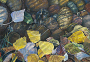 Birdseye Painting Posters - Leaves  Water and Rocks Poster by Nick Payne