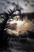 Gerlinde Keating - Keating Associates Inc - Life is a Journey