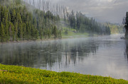 Sandra Bronstein - Lifting Fog on the Yellowstone River