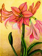 Plant Greeting Cards Drawings Posters - Lilies Poster by Zulfiya Stromberg